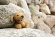Old plush toy dog abandoned on a stone