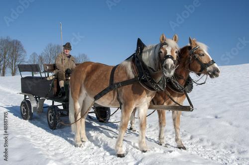 Pferdekutsche im Winger