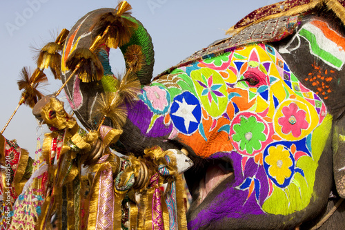Fotobehang Leeuw Decorated elephant at the elephant festival in Jaipur.