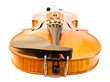 Violin from bottom view
