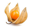 physalis one