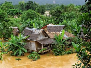 Überschwemmung im Djungel