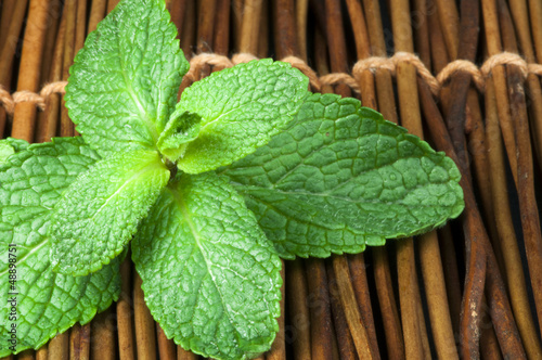 Mint leaves on wooden base