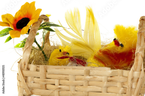 basket with Easter chicks