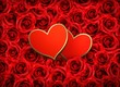 Valentine`s day background. Two hearts on background of  red flo