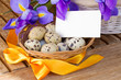 quail eggs and irises for easter