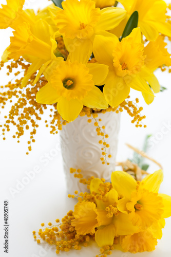 narcissus and mimosa