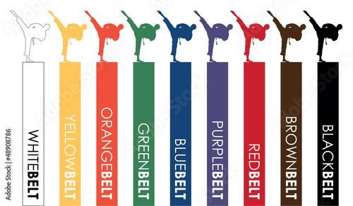 karate belts - 48908786