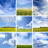 A collage of different blue sky and green grass images
