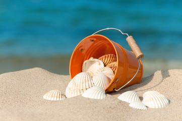 Sommerliches Strandstillleben mit weißen Muscheln, Sommerurlaub
