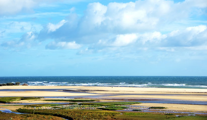 Landscape of Ria Formosa, Algarve