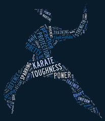 Karate pictogram on blue background
