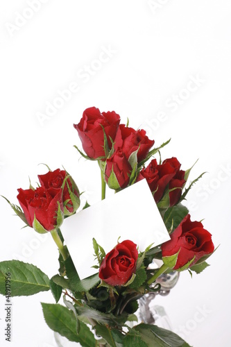 Roses greetings