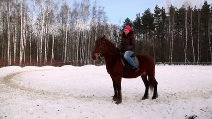 Woman sit on horse back in forest