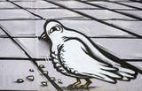 Fototapete Taube - Vögel - Graffiti