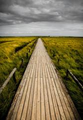 Der Weg Hochkant