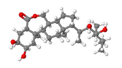 Plant hormone - Brassinosteroids - Brassinolide