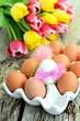 Frühstückseier und Tulpen
