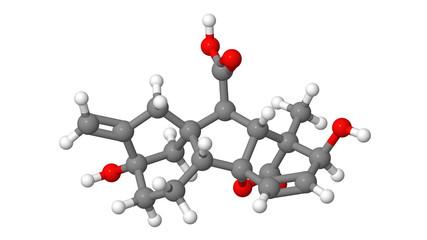 Plant hormone - Gibberellin - A3 - molecular model