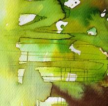 belle aquarelle vert