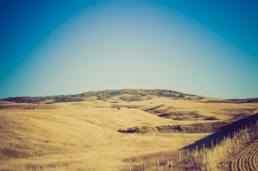 Grassland field at sunset - Drumheller Alberta - LOMO