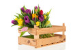 Wooden crate full tulips