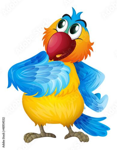 A parrot wondering