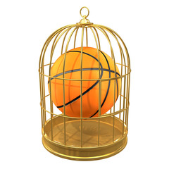 Birdcage with basketball inside