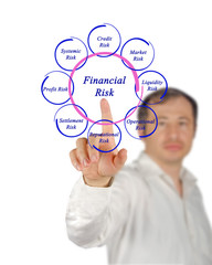 Diagram of financial risks