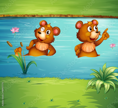 Deurstickers Beren Two animals in the pond