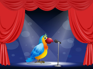A parrot at the center of the stage