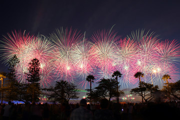 Australia Day Skyworks from Langley Park