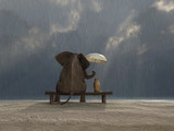 Fototapety elephant and dog sit under the rain