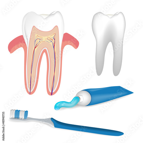 Vector Illustration of Dental Care Elements