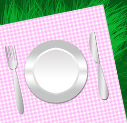 plastic dish for a picnic on a napkin and grass