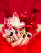 Woman beautiful hands with manicure holding flowers on red