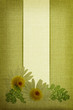 Daisy flowers on fabric texture