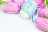easter eggs withpink  tulips on white with space for text