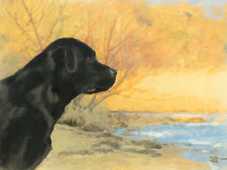 oil painting portrait of black labrador in autumn