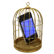 Birdcage with smartphone inside