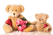 Teddy with roses - Teddy mit Rosen