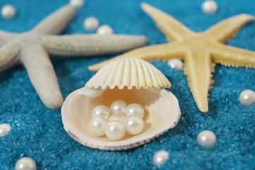 shells and pearls on background made of blue little rocks