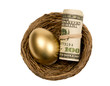 Golden Egg With Roll Of Money In Nest