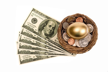 Golden Nest Egg With Lots of Money
