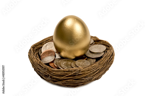 Golden Egg Standing Up In Nest Of Money