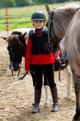 Horses and lovely equestrian girl