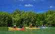 Kayaking in the thai - kayaking at krabi thailand - kayaking at