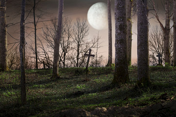 Moon over the cemetery