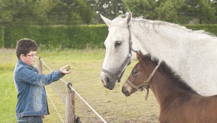 Boy feeding horses