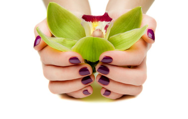 Beautiful manicures and Orchid